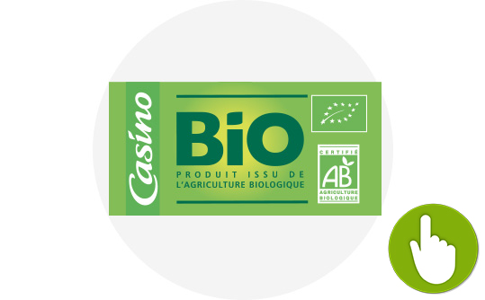 CasinoBio